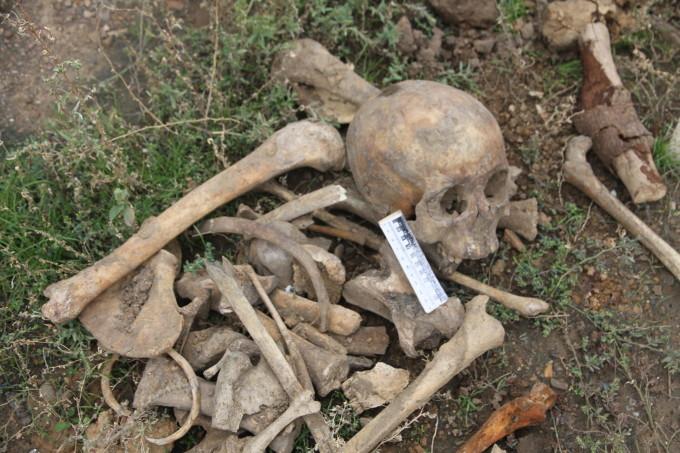 По словам криминалистов, внешний вид костей свидетельствует о том, что им уже много лет