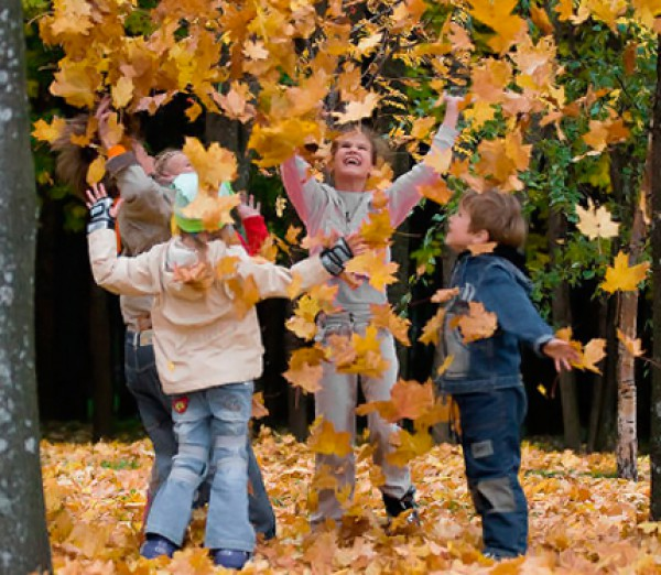 фото портала www.kp40.ru