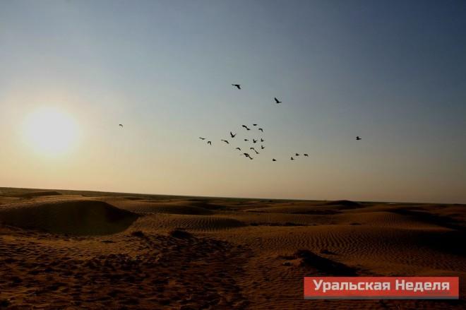 Image_30