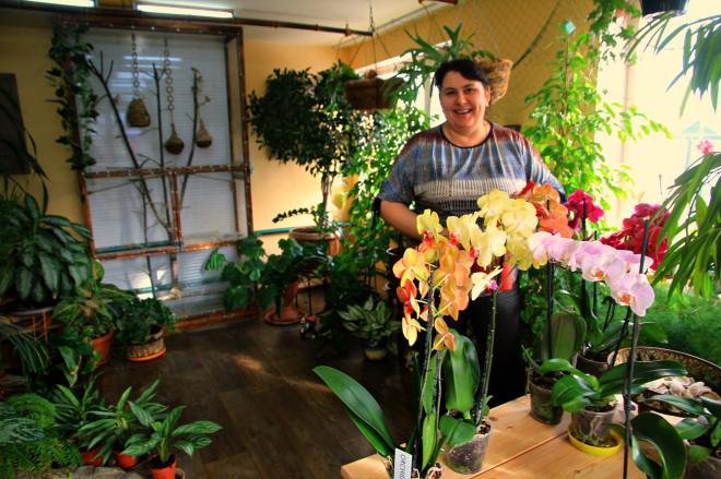 Орхидеи занимают не только все подоконники в доме, но также растут в отдельной оранжерее, которую члены семьи Яковлевых называют Зимним Садом. В зимнем саду помимо орхидей много другой растительности: пальм, вьюнов, деревьев. Райскую атмосферу также создает пение маленьких птичек – амади, которые летают и щебечут в клетке.