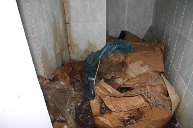 В одной из комнат мы обнаружили сваленное в углу протухшее мясо. Почему его вовремя не скормили собакам неизвестно.