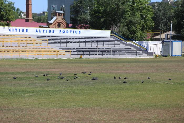 """Пока на стадионе """"Юность"""" """"работают"""" только голуби"""