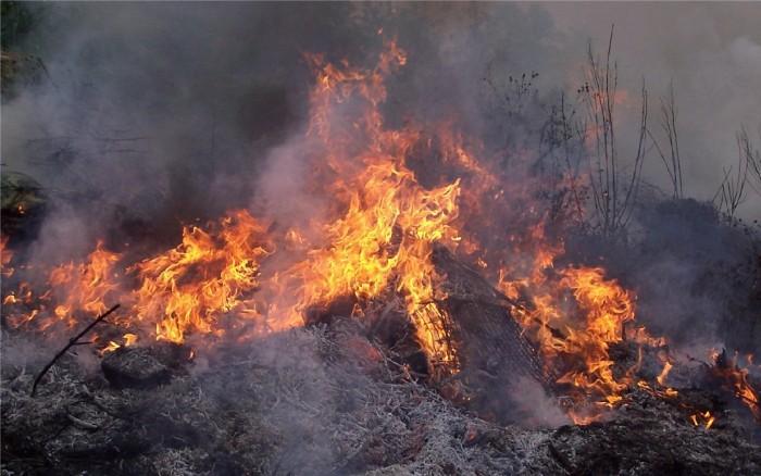 пожар фото