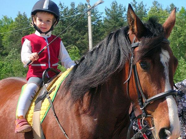 ребёнок на лошади