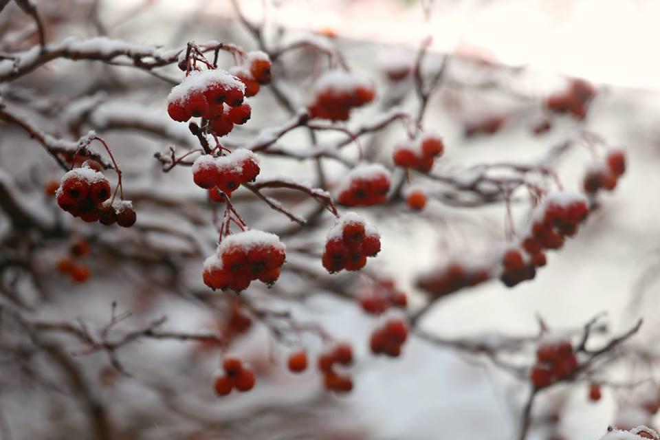 Прогноз погоды на 21 февраля в Уральске и Аксае