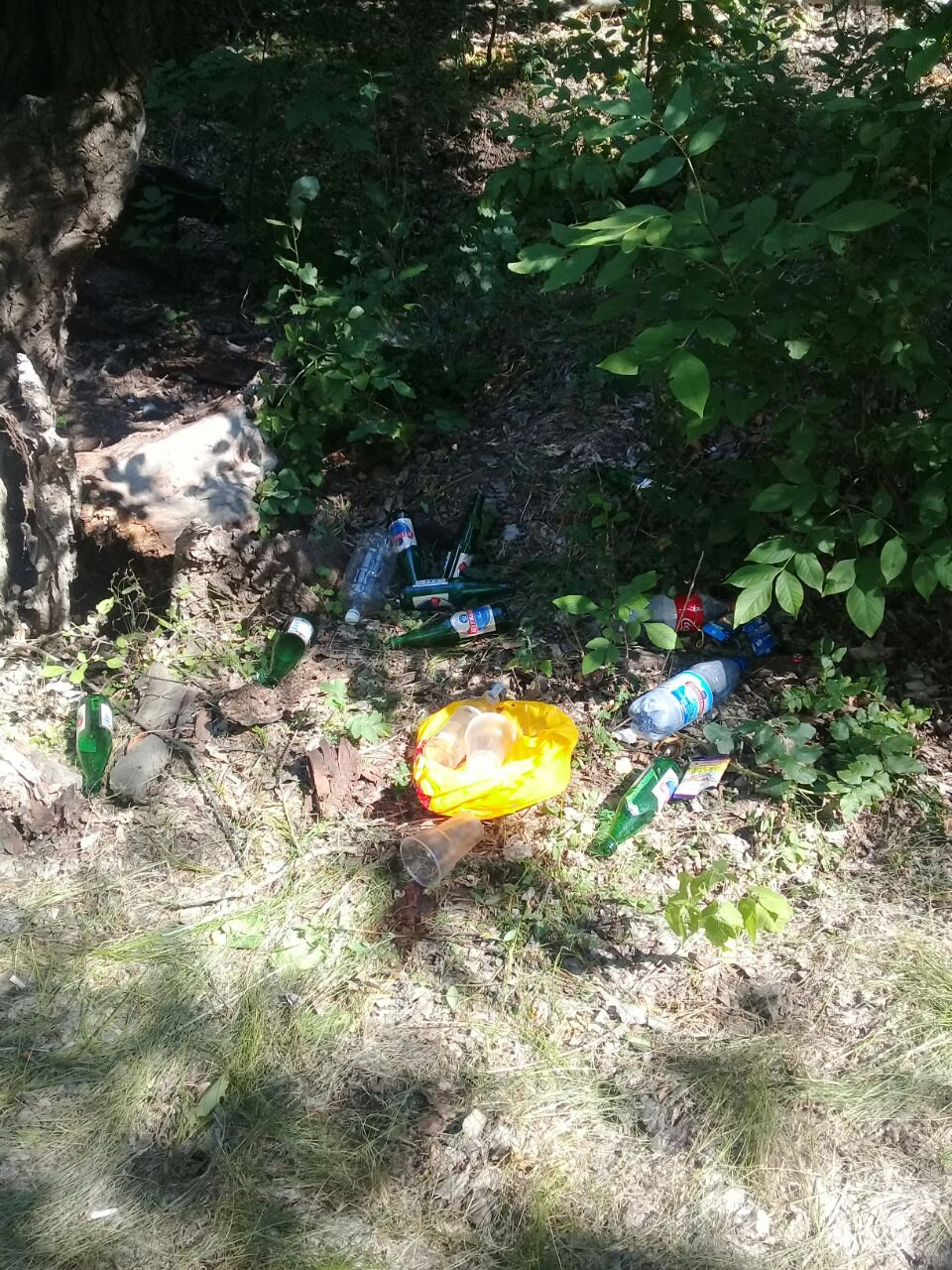 Госслужащие хорошо отдохнули на природе, оставив за собой кучу мусора в ЗКО